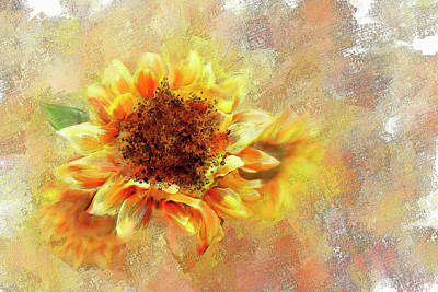 Mixed Media - Sunflower On Fire by Mary Timman