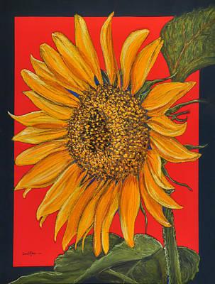 Da153 Sunflower On Red By Daniel Adams Art Print