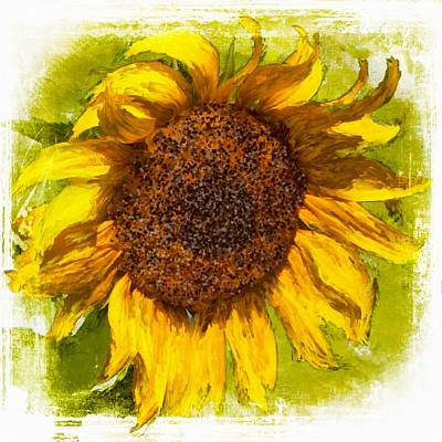 Mixed Media - Sunflower Power by Barbara Chichester