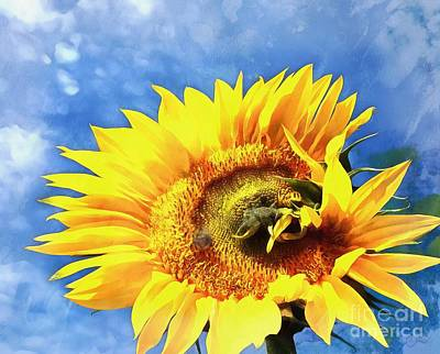 Photograph - Sunflower - Reach by Janine Riley