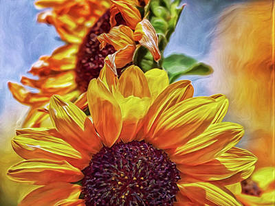 Science Collection Rights Managed Images - Sunflower Risen Royalty-Free Image by Doctor MEHTA