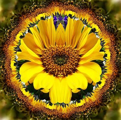 Digital Art - Sunflower Roundel by Nancy Pauling