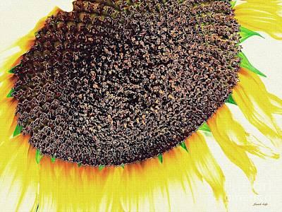 Photograph - Sunflower by Sarah Loft