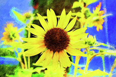 Photograph - Sunflower Series 9113 by Carlos Diaz