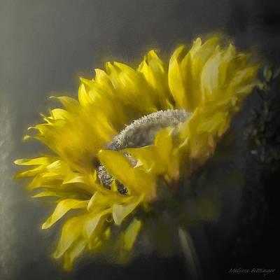 Sunflower Slumber Art Print