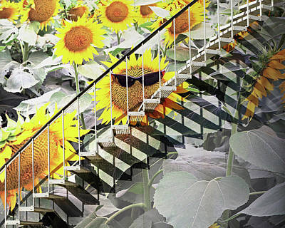 Photograph - Stairway To The Sun by Christopher McKenzie