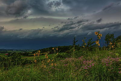 Photograph - Sunflower Storm Front by Dale Kauzlaric