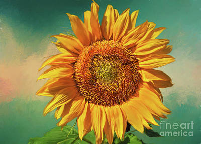 Digital Sunflower Painting - Sunflower Summer by Janice Rae Pariza