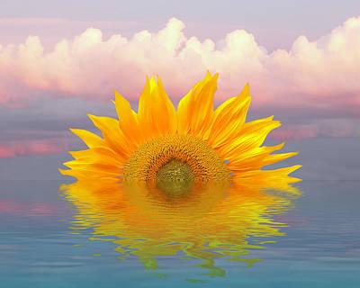 Photograph - Sunflower Sunrise Reflections by Gill Billington