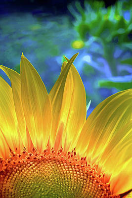 Digital Art - Sunflower Sunshine by Pennie McCracken