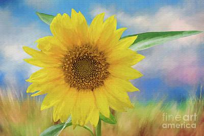 Sunflower Surprise Art Print by Bonnie Barry