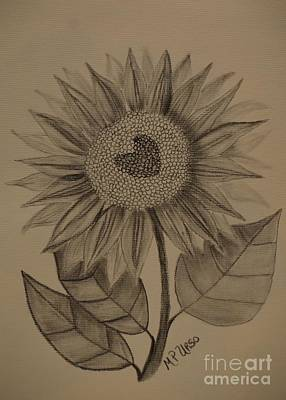 Drawing - Sunflower Sway by Maria Urso