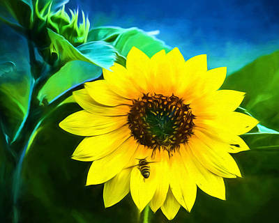 Sunflower Photograph - Sunflower - What's All The Buzz About? by Black Brook Photography