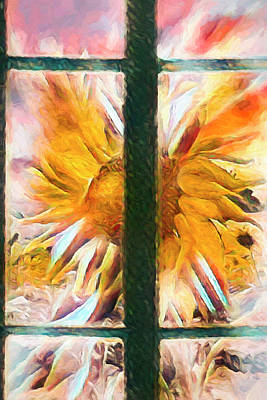 Photograph - Sunflower Window Oil Painting by Debra and Dave Vanderlaan