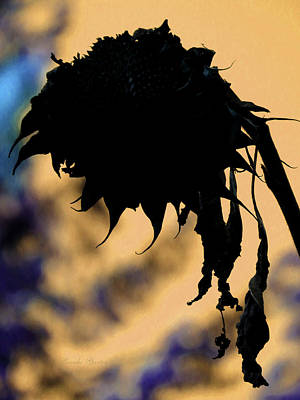Photograph - Sunflower Winter Silhouette - Sunflowers - Flowers From The Garden by Brooks Garten Hauschild
