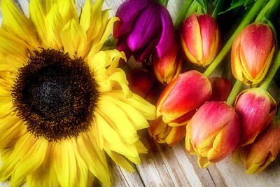 Sunflower With Tulips Art Print