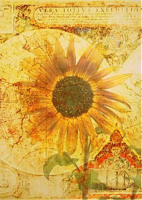 Flower Map Digital Art - Sunflower World by Cathie Tyler