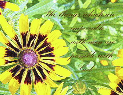 Photograph - Sunflower2 by Inspirational Photo Creations Audrey Taylor