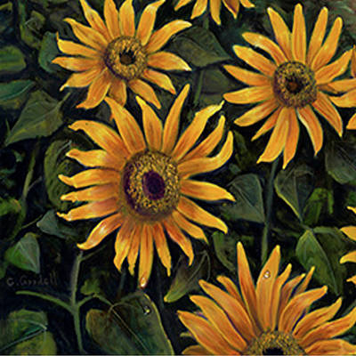 Painting - Sunflowers 1 by Claudia Goodell