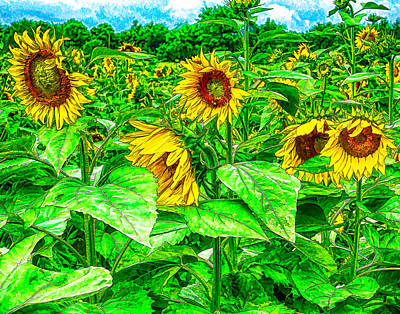Photograph - Sunflowers 3 by Leah Palmer