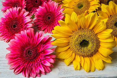 Photograph - Sunflowers And Pink Gerbera Daises by Garry Gay