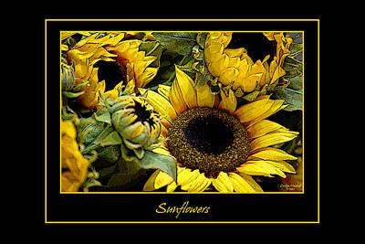 Sunflowers Art Print by Carolyn Marshall
