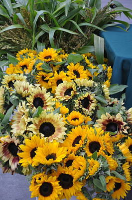 San Fransisco Photograph - Sunflowers For Sale by Vijay Sharon Govender