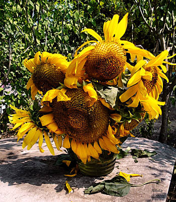 Photograph - Sunflowers For Vincent by Natalie Holland