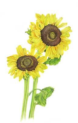 Sunflowers Art Print by Georgea Hugus