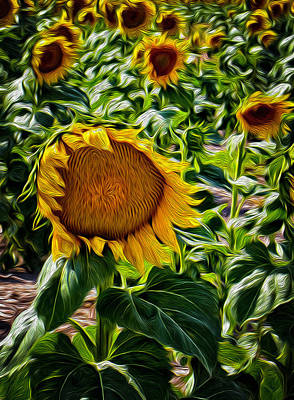 Painting - Sunflowers Glaze by Michael Gross