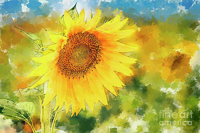 Digital Art - Sunflowers I by Hernan Bua