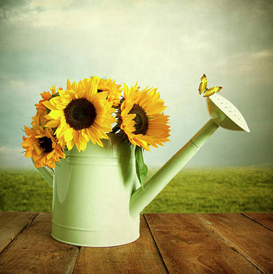 Photograph - Sunflowers In A Watering Can by Ethiriel Photography