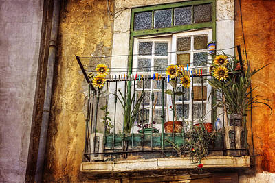 Portuguese Photograph - Sunflowers In The City by Carol Japp