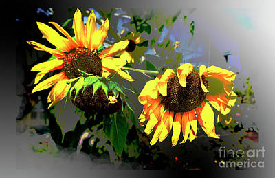 Digital Art - Sunflowers Late Season by Deborah Nakano