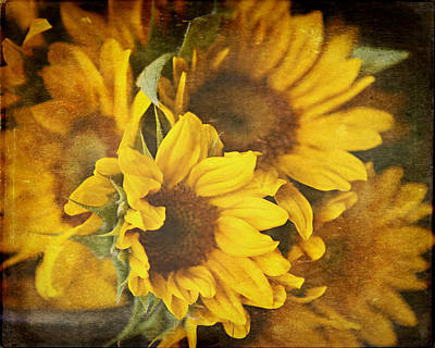 Country Chic Photograph - Sunflowers by Lisa Russo