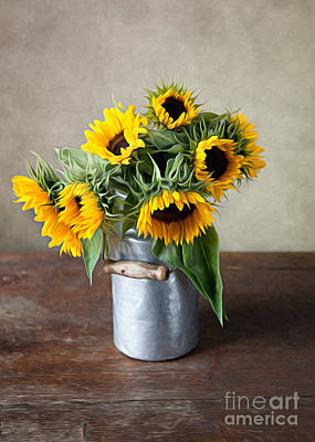 Shiny Photograph - Sunflowers by Nailia Schwarz