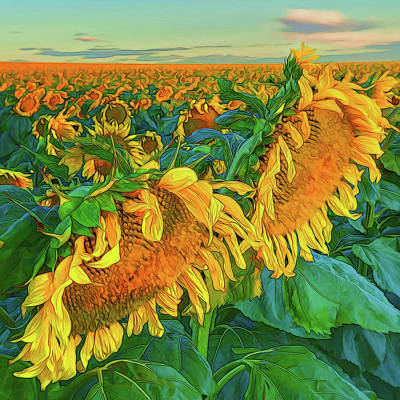 Photograph - Sunflowers by OLena Art Brand