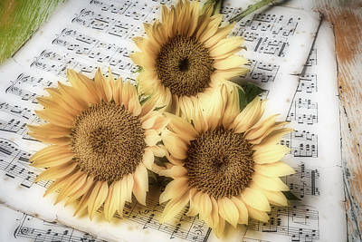 Sheet Music Photograph - Sunflowers On Sheet Music by Garry Gay