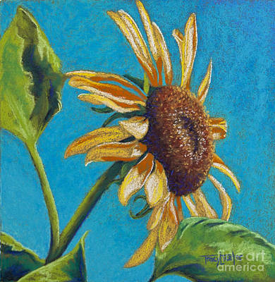 Pastel - Sunflower's Shine by Tracy L Teeter