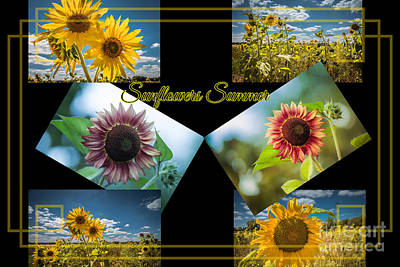 Digital Art - Sunflowers Summer by Eva Lechner