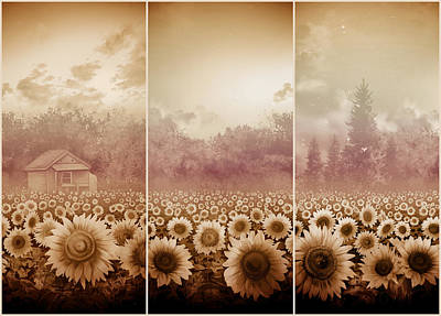 Monochromatic Digital Art - Sunflowers Triptych 3 by Bekim Art