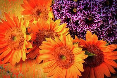 Pom Photograph - Sunflowers With Pom Spray by Garry Gay
