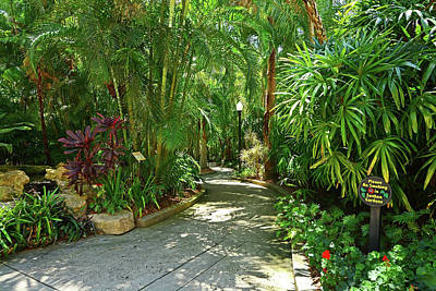 Photograph - Sunken Gardens by Ben Prepelka