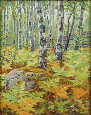 Sunlight In The Forest. Print by Elin Alfhild Nordlund