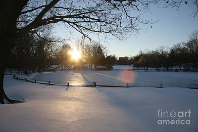 Sunlight On A Frozen Pond  Art Print by Clay Cofer