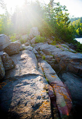 Minnesota Photograph - Sunlight On Cove Point by Alex Blondeau