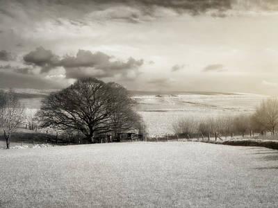 Photograph - Sunlight On Farmland by Wim Lanclus