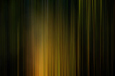 Photograph - Sunlight On Grass Digital Abstracts Motion Blur by Rich Franco