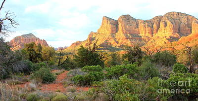 Sunlight On Sedona Rocks Art Print