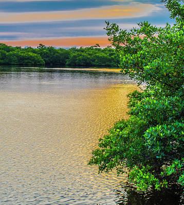 Photograph - Sunlight On The Marsh by Steven Ainsworth